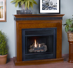 what is direct vent fireplace submited images